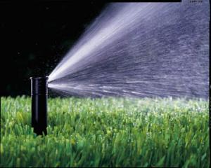 a stationary pop up sprinkler in Arlington Texas